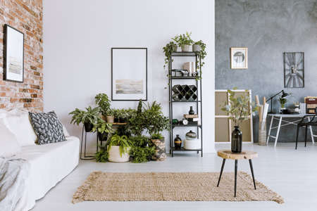White couch against brick wall with poster in cozy open space interior with plants and stool on brown rug Reklamní fotografie