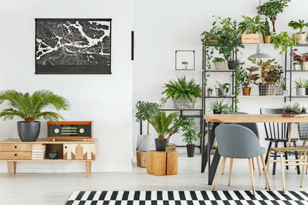 Black map on white wall above a wooden cupboard in botanic dining room interior