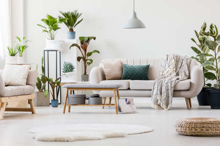 Spacious living room interior with plants, two settees, gray bench and fur rug