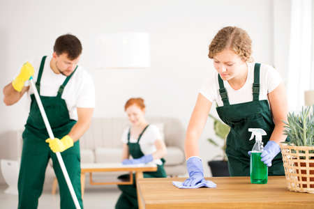 Team of workers from cleaning service washing the floor and wiping wooden tables in bright living room Stock Photo