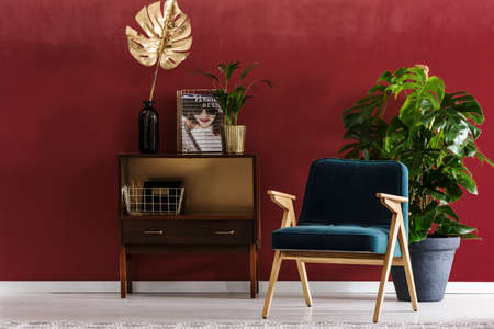 Blue armchair, wooden cupboard and big plant set on dark red wall in living room interior