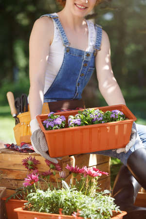 Smiling woman with garden tools moving a box with seedlings during gardening work