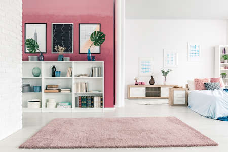 Modern, open space apartment interior with bed, cupboard, big rug, plants and posters