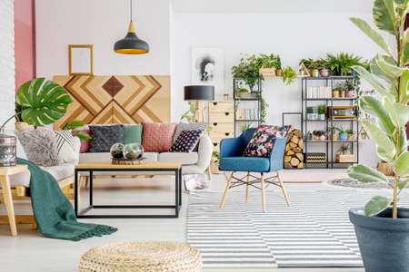 White, open space living room interior with posters, fresh plants and striped carpet
