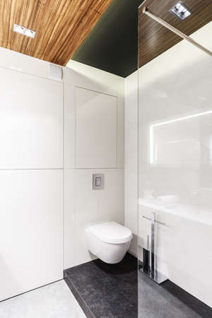 Simple bathroom interior with white walls, toilet seat and shower cubicle 写真素材