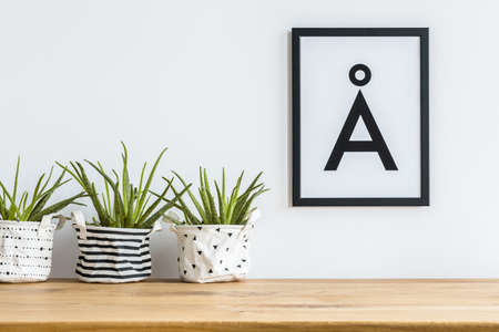 Close-up of aloe in diy, patterned fabric planters on a shelf and a minimalist letter poster in a black frame on a white wall Foto de archivo