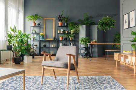 Poltrona vintage, grigia al centro di un interno di soggiorno tropicale con molte piante sul pavimento in legno e cremagliera nera