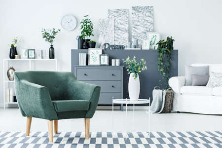 Green armchair standing on the carpet in bright living room interior with grey cupboard, decor, fresh plants and modern paintings