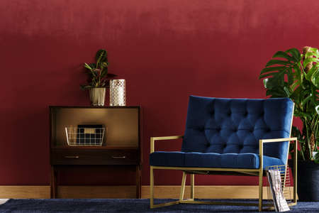 Small, wooden cupboard with a plant and navy blue armchair standing in living room interior with Monstera Deliciosa