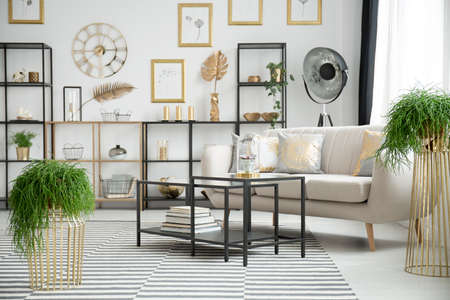 Plants in sophisticated living room interior with black table and sofa against shelves with gold leaves