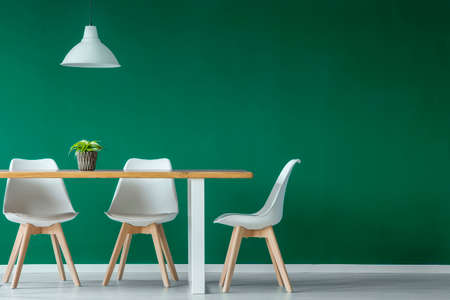 White lamp above chairs and wooden table with plant in green dining room interior with copy space