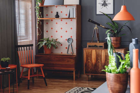 Orange and black chair next to a wooden cabinet with plant in rustic living room interior Stock Photo - 101345342
