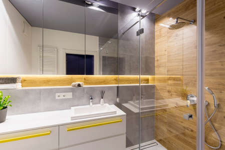 Glass shower next to a mirror and washbasin in modern bathroom interior with wood Imagens