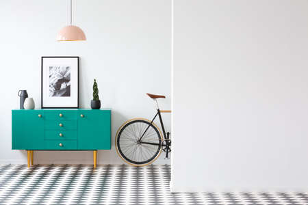 Plant and poster on green cabinet in retro living room interior with bicycle and copy space on the wall