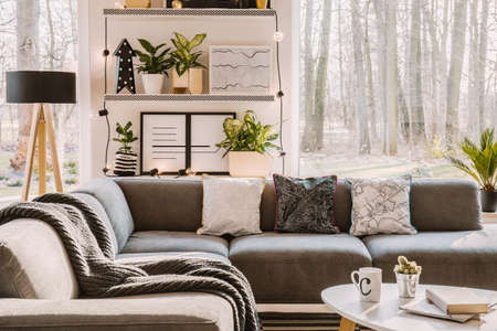 Potted cactus, tea mug and book placed on white coffee table standing next to grey corner lounge with pillows in bright living room interior with posters and plants