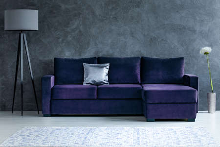 Dandelion next to purple corner sofa with silver pillow in dark living room interior with lamp Stok Fotoğraf