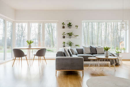 Plants on shelves in natural apartment interior with wooden table near corner sofa Stock fotó
