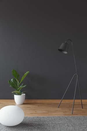 Wohnzimmerinnenraum mit grüner Pflanze in einem weißen Topf und in der Metalllampe stellte auf schwarze, leere Wand ein Standard-Bild