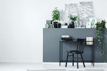 Grey home office interior with a desk, typewriter, plants and paintings next to an empty wall