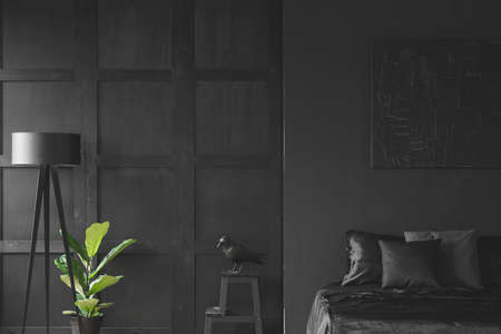 Sculpture on table between plant, lamp and bed in monochromatic black bedroom interior