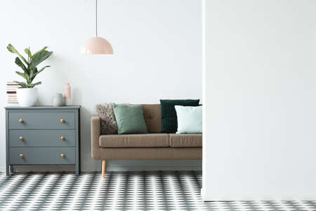 Copy space on white wall in living room interior with brown settee next to grey cabinet with plant 版權商用圖片