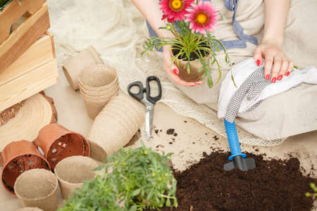 Top view of gardening tools for planting flowers and a soil