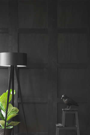 Black bird on the table next to a lamp and plant in minimal living room interior 版權商用圖片