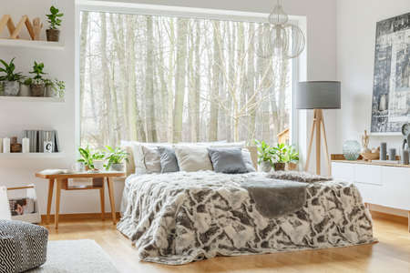 Spacious, cozy bedroom interior with a king-size bed with grey cushions, lamp and table next to it as well as shelves with plants and ornaments on the wall