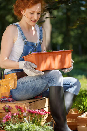 Young woman in dungarees and wellingtons sitting on a wooden crate outside, in the backyard and holding a flower pot Stock Photo