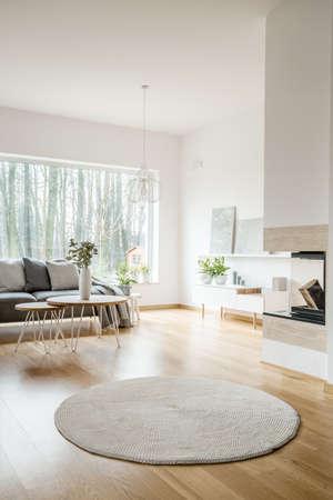 Rond tapijt in ruim appartementinterieur met open haard en grijze bank tegen het raam Stockfoto