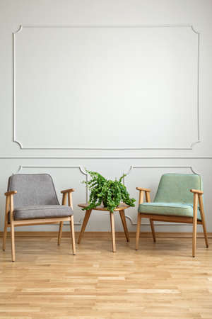 Plant on wooden table between armchairs in minimal living room interior with copy space. Real photo