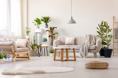 Pouf next to rug in bright living room interior with plants and beige couch. Real photo