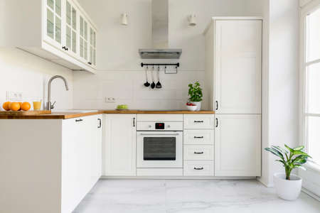 Silver cooker hood in minimal white kitchen interior with plant on wooden countertop. Real photo Stockfoto