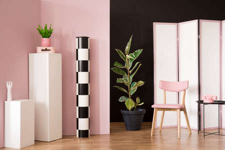 Ficus next to a pink wooden chair in dressing room interior with screen and phone on white pedestal