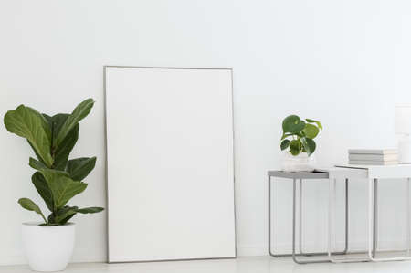 Real photo of a simple interior with a poster mockup between plants. Paste your graphic here Stockfoto
