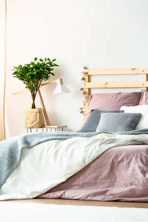 Pink and grey sheets on bed with wooden bedhead in pastel bedroom interior with plant. Real photo Archivio Fotografico - 102834237