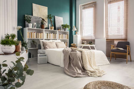 Side view of king size bed with pillows and blankets in bedroom interior with plants, bookcase and paintings