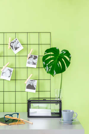 Monstera leaf, cup and glasses on desk against green wall in flat interior. Real photo Archivio Fotografico - 102849793