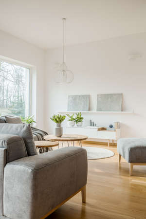 Grey paintings on white wall in scandi living room interior with sofa and flowers on round table Stok Fotoğraf - 102849808