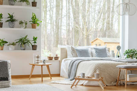 Blue pillows on bed next to a wooden table in natural bedroom interior with plants and window Stock Photo