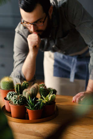 High angle of hipster looking at succulents and cacti on wooden table