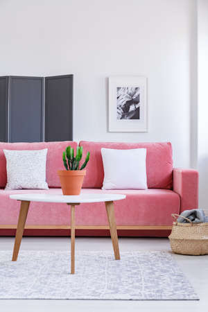 Plant on wooden table in front of pink sofa with white pillows in living room interior. Real photo Stock Photo