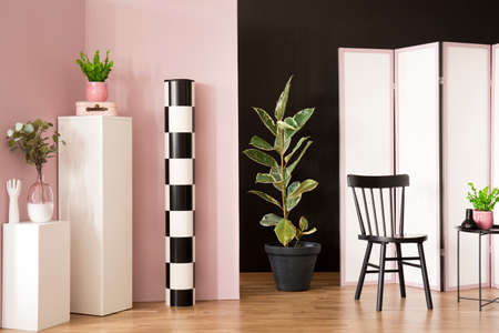 Ficus next to black chair in pastel living room interior with screen and plant on white pedestal