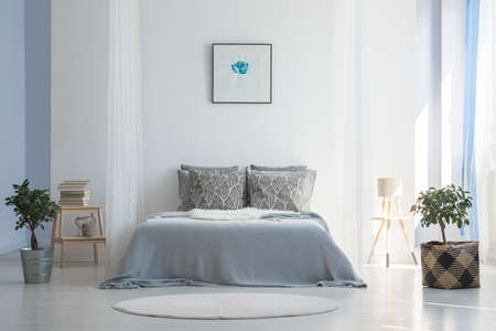 Grey bed between plants in white simple bedroom interior with poster and round rug. Real photo Banco de Imagens