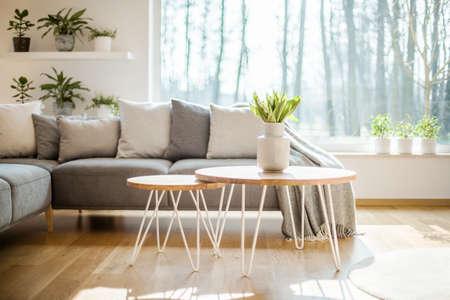 Mesas de horquilla con tulipanes frescos en un jarrón de pie en el interior luminoso de la sala de estar con ventana grande, plantas en macetas y salón de esquina gris