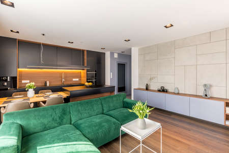 Green velvet couch placed in open space living room and kitchen interior with fresh flowers, dining table and lamps Stok Fotoğraf
