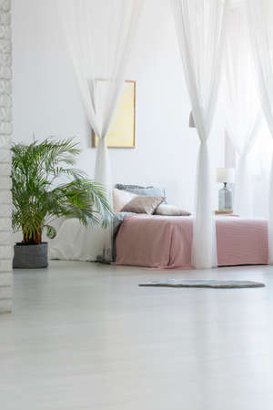 Grey rug placed on the floor in white bedroom interior with green plant, modern poster hanging on the wall and double bed with pink blanket and pillows Stock Photo