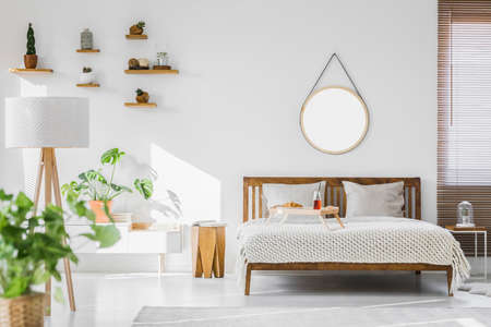 A white, sunlit hotel bedroom interior with monstera deliciosa plant, cacti on shelves and a round mirror above a rustic, wooden double bed