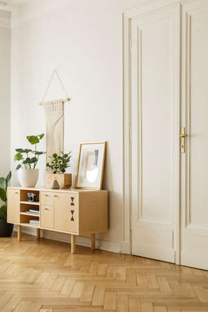 Wooden cabinet with plant and poster in white living room interior with door. Real photo