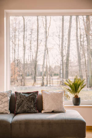 Patterned pillow on grey sofa in cozy living room interior with view on forest Stok Fotoğraf